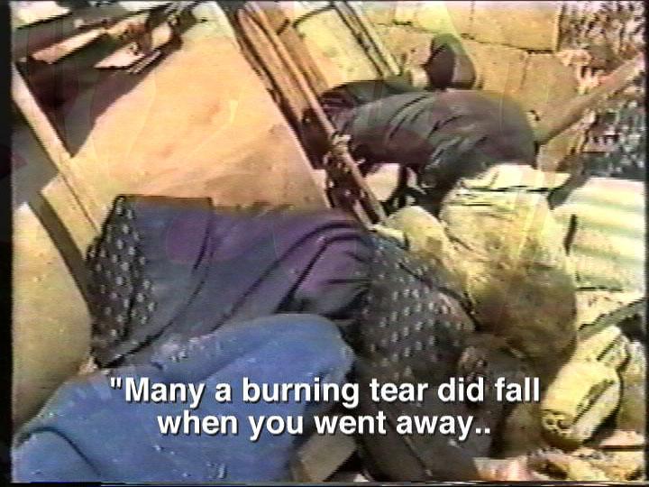 VTAPE VIDEO PLAY Program 5: Palestine in Motion
